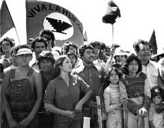 Today in labor history: United Farm Workers launch the lettuce boycott