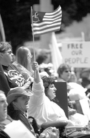 Disability rights and the civil rights revolution