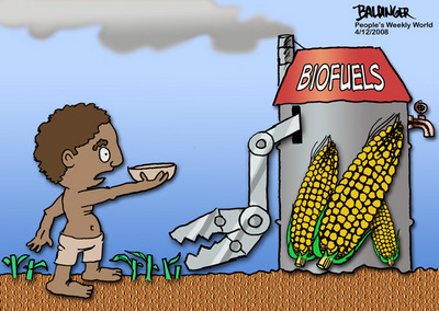 CARTOON: Biofuels