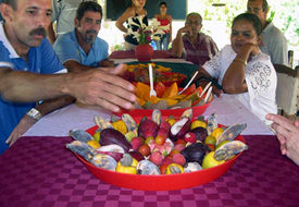 50 years of Cuban Agrarian Reform: overcoming challenges to feed the people