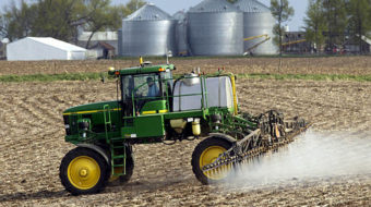 EPA to probe weed-killer's links to cancer, birth defects
