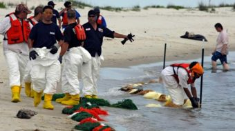 """BP profits, and people """"get stuck"""" cleaning up mess"""