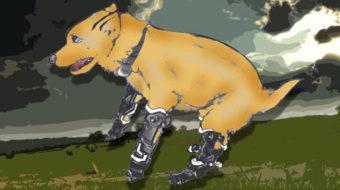 Naki'o: the amazing bionic puppy