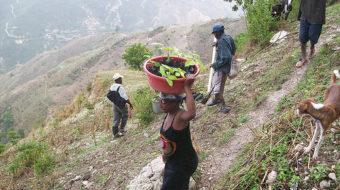 Haiti:  Real development or cheap labor haven?
