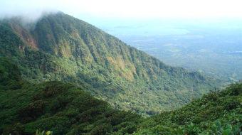 U.S. drug war destroys rain forests