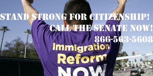 Senate immigration bill hailed