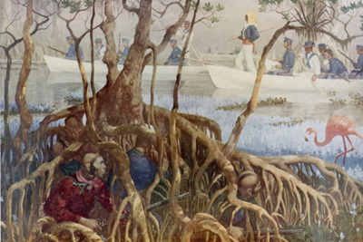 Today in labor and peoples history: Seminole Wars begin