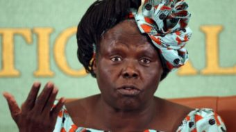 An appreciation for Wangari Maathai, the leopard of Kenya