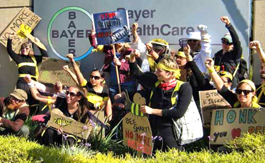 Activists abuzz over Bayer's bee killing