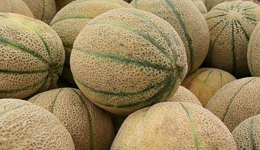 Colorado cantaloupes: a deadly listeria outbreak