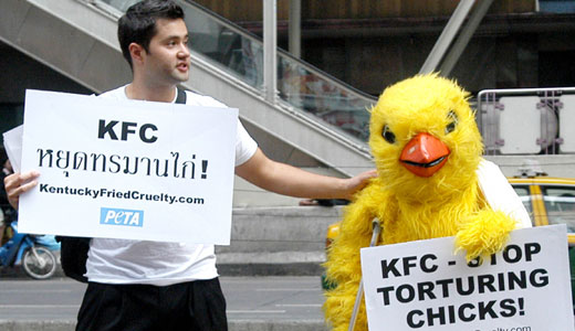 KFC's tainted legacy of rainforest destruction, animal cruelty