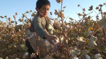 Unions take aim at child labor, trafficking