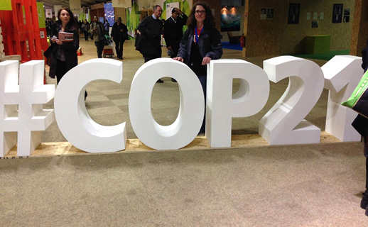 After Paris: Examining the COP 21 climate agreement
