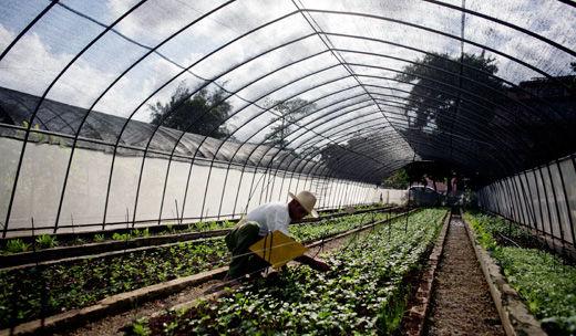 Cuba's new, experimental urban cooperatives