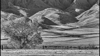 The Panoche Hills: the strange sere bones of an ancient landscape