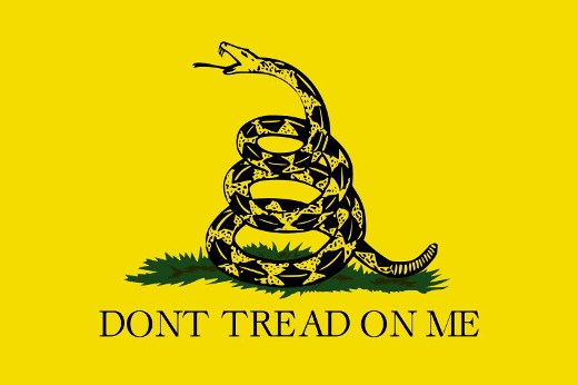 Tea party picked the wrong flag