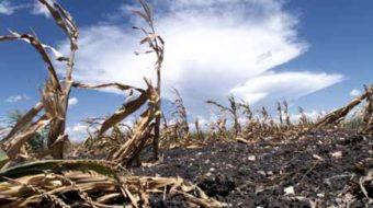 Climate change: good news / bad news