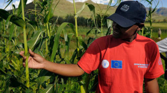 Cuba, Vietnam among 38 countries that reduced hunger
