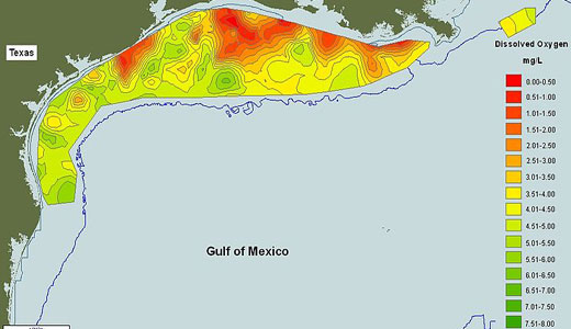 Gulf of Mexico dead zones are part of climate disaster web