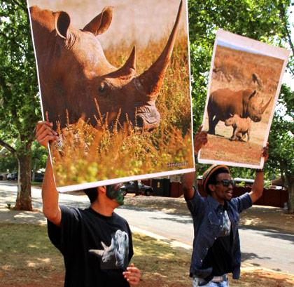 Rare rhino death as poaching worsens