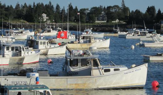 Union flags fly along the Maine coast