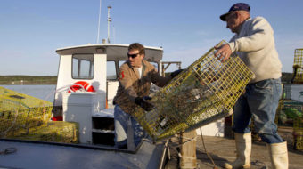 Maine lobstermen stop work
