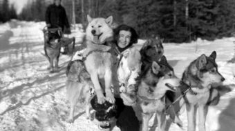 Today in women's history: Mary Joyce ends thousand-mile sled dog trip