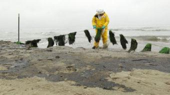 Texas oil spill worsens as it travels down coast