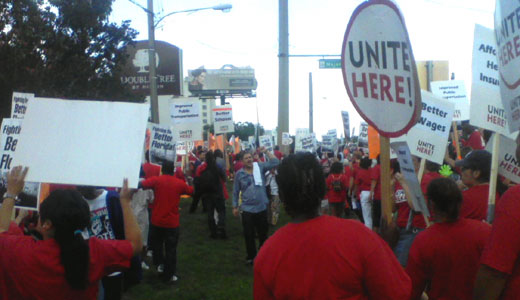 "At DoubleTree, workers fight for ""better Florida"""