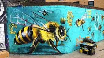 Company halts bee-killing chemicals as activists stir up a hornet's nest