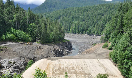 Hopes soar as Elwha dams come down and salmon return