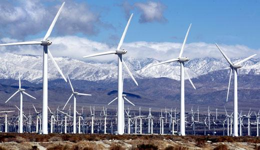 Wind farm impact on wildlife debated