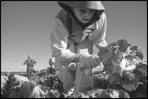 Jewish and African-American orgs join fight for California farmworkers