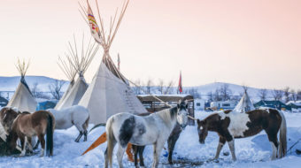 Trump declares war on Indian Country with presidential signings on DAPL and Keystone XL