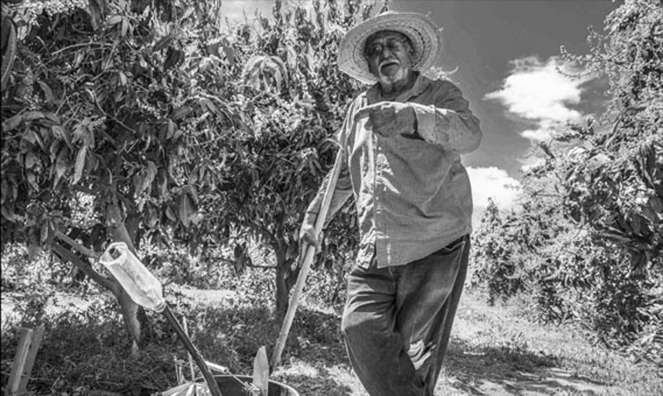 Unions and organic farming help workers and environment in Coachella Valley