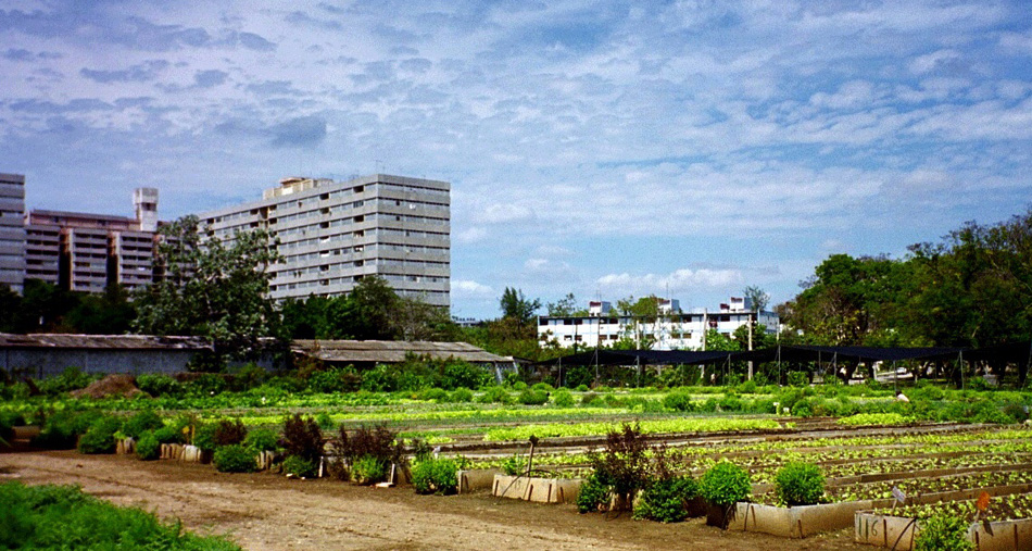 Agrotowns: Ecological pathways to development