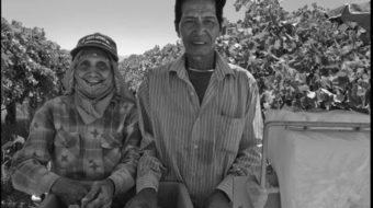 Filipino migrants gave grape strike its radical politics