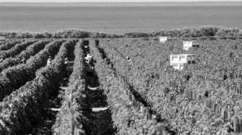 Guest farm workers face exploitation, harsh conditions