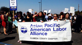 Labor group says Asian-Americans can help flip red districts