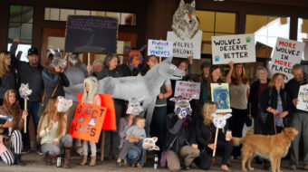 As Trump endangers animals, others defend them on World Animal Day