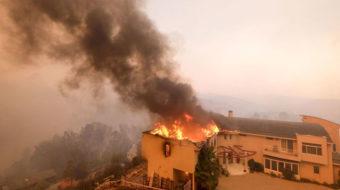 California wildfire pushes toward Malibu, Pacific Ocean