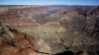 If income gap is a chasm, wealth gap is Grand Canyon