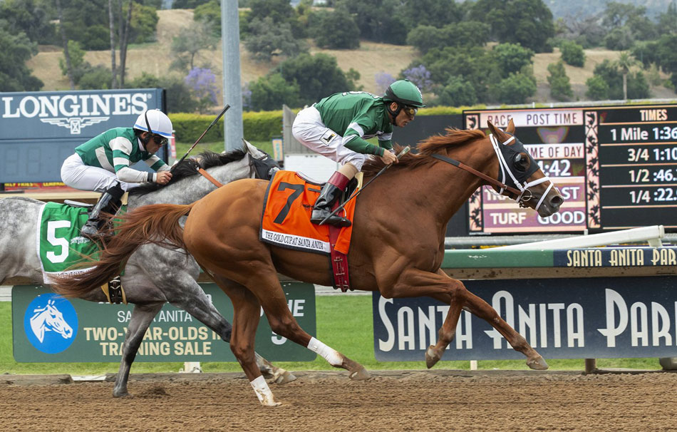 Santa Anita checking if rules followed before horse's death