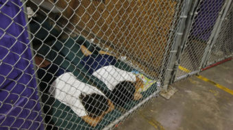 Trump administration caging children in horrific conditions at the border