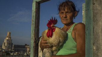 Hot Docs from Latin America: The latest harvest of films