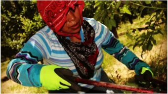 N.Y. joins Calif. in passing comprehensive labor rights for farm workers