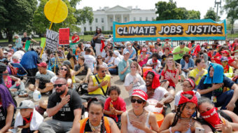 Green Strategy: To beat climate change, humanity needs socialism
