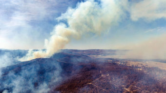Australian fires and drought: Government cut climate change research, ignored scientists