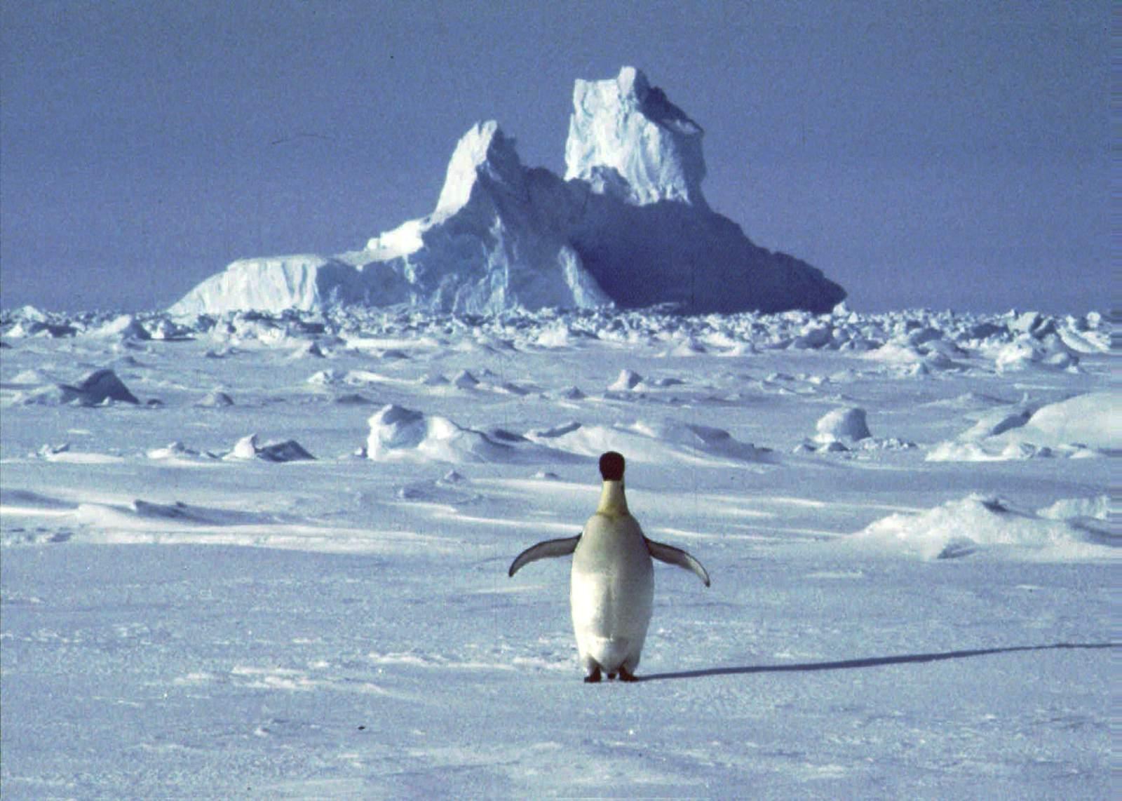 Keys to 2020: Antarctica 69.3°, Bernie in Nevada 46%, Union density 10.3%