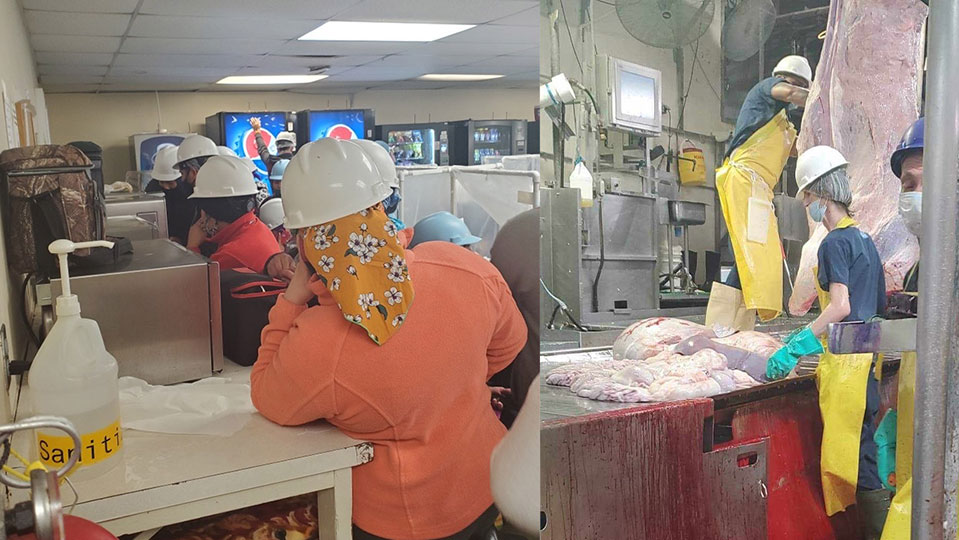 Nebraska kosher meat packing plant leaves workers trayf—unclean—vs. coronavirus